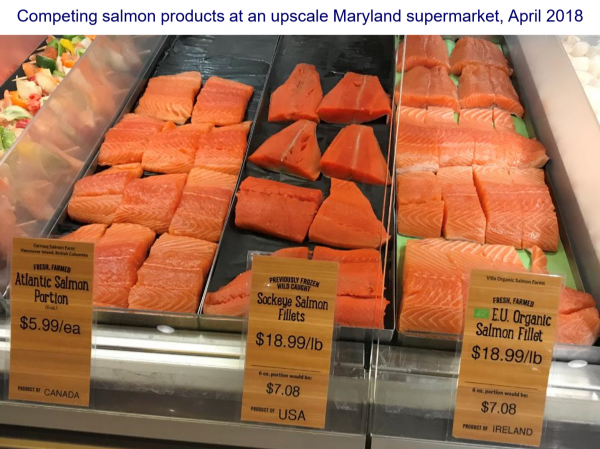 competing salmon products at an upscale Maryland supermarket, April 2018