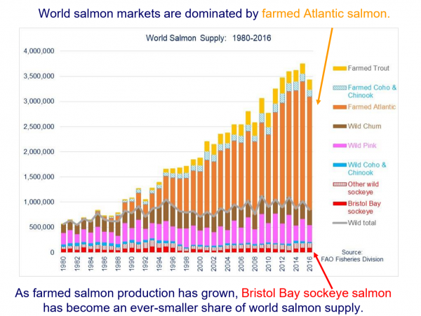 World Salmon supply 1980-2016 (world salmon markets are dominated by farmed Atlantic salmon)