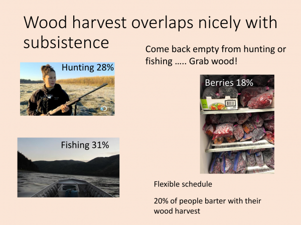 Wood harvest overlaps nicely with subsistence