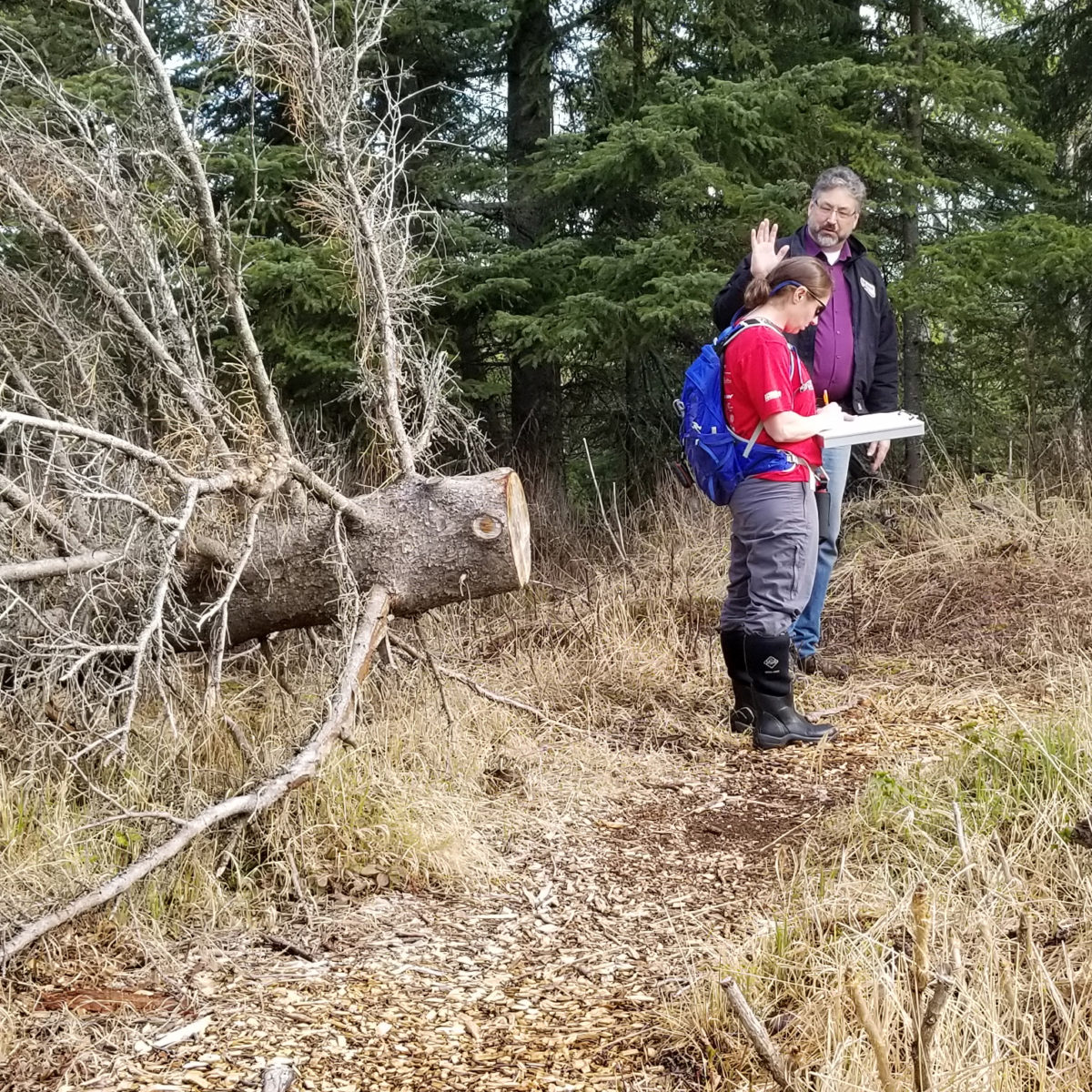 """Schmidt and Hezekiah """"Ky"""" Holland are on site surveying vegetation in the woods"""