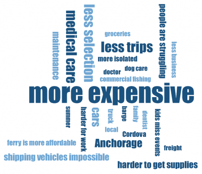 word cloud with 'more expensive' as largest in the center